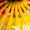 Hidden behind the yellow fan: