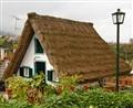 Grassy roof