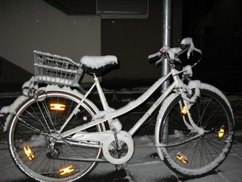 Ben-Ami ~ Winter Bicycle