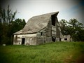 Very old weathered barn