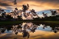 colorful tropical sunrise in neighborhood with pond reflecting