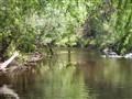 Lower Dargo River, Vic Aust