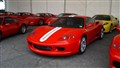 Ferraris IMG_1149