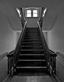 Snug Harbor Stair