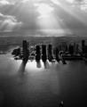 Rays on Jersey City
