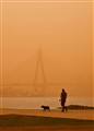 Walking dog-Sydney sandstorm, 23-Sep-09