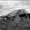 Bruthen Hut