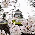 Holidaying in Japan
