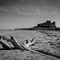 Bamburgh Castle: Driftwood on the Bamburgh Strand with the castle in the background.