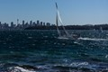 Sailing in Sydney Harbour