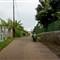 Rural street