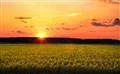 Panonian Sunset
