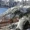 IMGP3928 Tanne mit Schnee