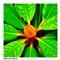 PB060377_edited_3