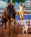The Upside Down Cowboy