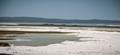 Salt Flats near Chaplin Saskatchewan