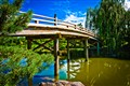 Chicago Botanic Garden: Japanese Garden Bridge