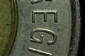 coin (2:1 macro)