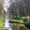 hayworth creek I