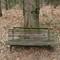 01 bench: OLYMPUS DIGITAL CAMERA