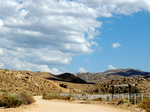 Oak Springs Ranch, July 13, 2013 147
