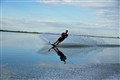 Waterskiing Reflections