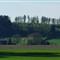 Farmland027