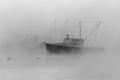 Sea Smoke Down East Maine January Monring