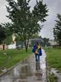 All day rain