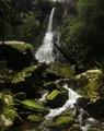 Tooloona Falls