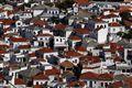 Skopelos roofs