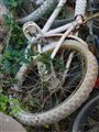 from am old bike's 'graveyard'.